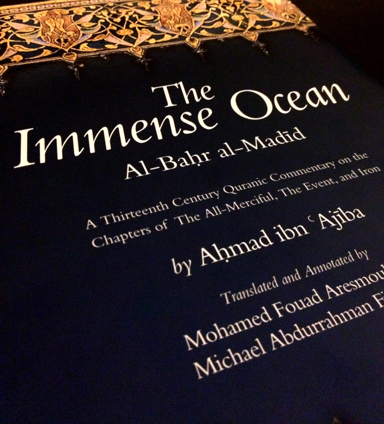 The Immense Ocean